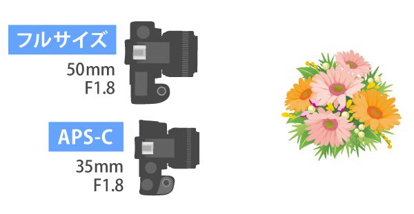 フルサイズとAPS-Cの焦点距離-ボケ量