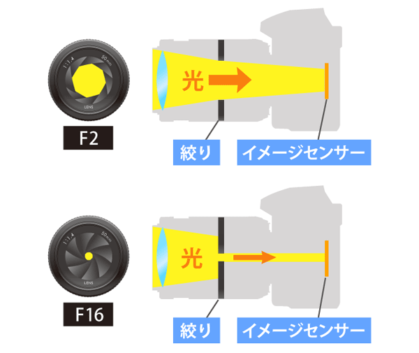 F値が小さいとカメラに入る光量が多い