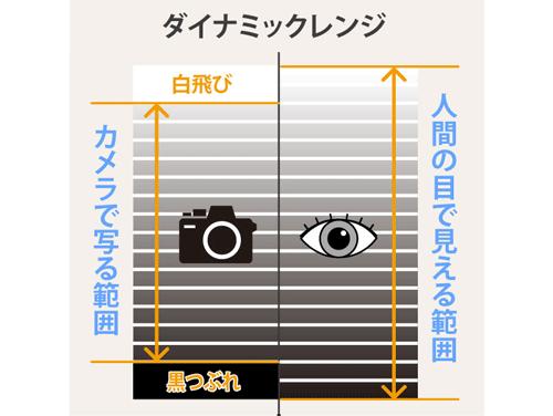 カメラのダイナミックレンジ