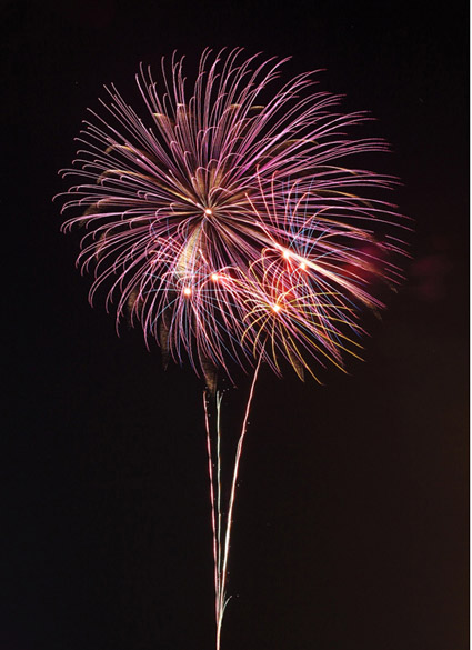 縦構図の花火写真