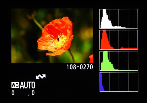 RGBヒストグラム