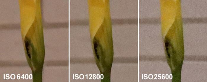 EOS 90D高感度画質比較