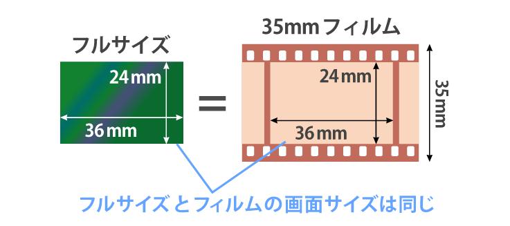 イメージセンサー-35mmフィルムサイズ比較