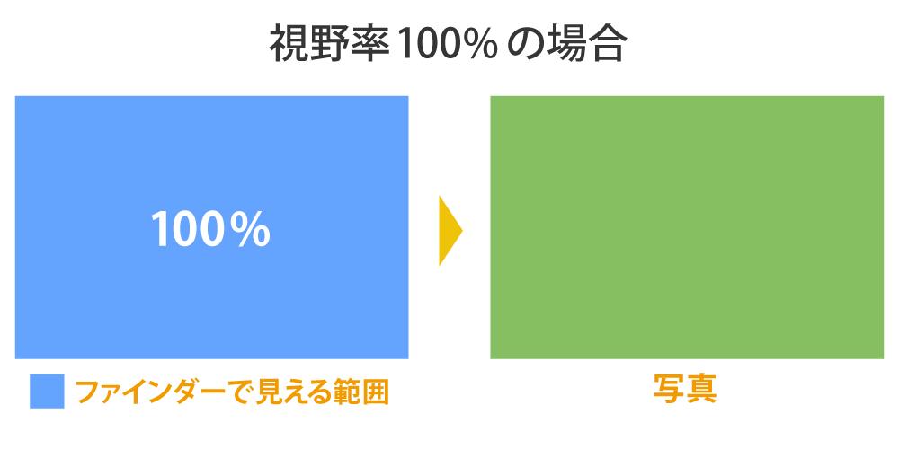 視野率100%