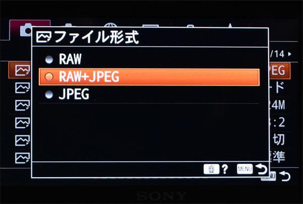 ファイル形式設定jpeg-raw