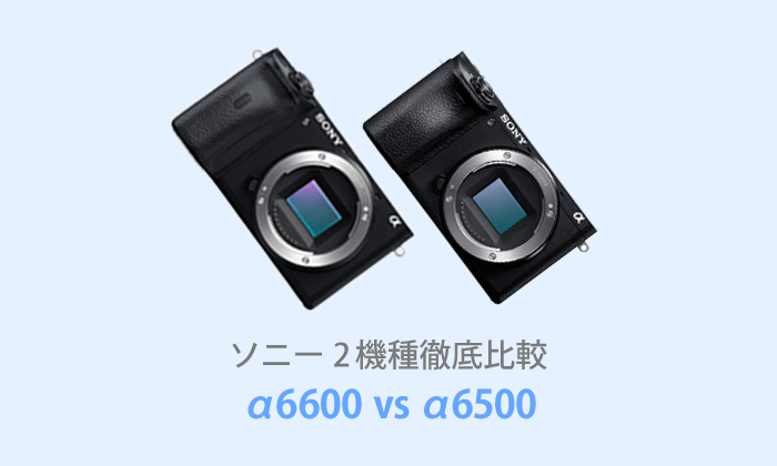 ソニーα6600とα6500を徹底比較【体験レビュー】