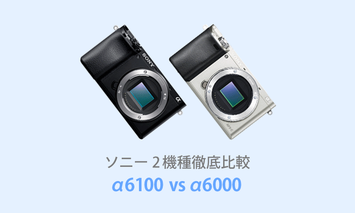 ソニーα6100とα6000を徹底比較【体験レビュー】