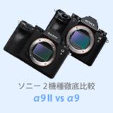 ソニーα9IIとα9を徹底比較【体験レビュー】