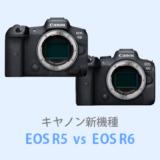 EOS R5 R6