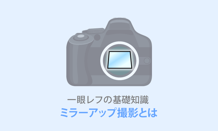 【ミラーアップ撮影とは?】写真の微ブレを防ぐ撮影方法