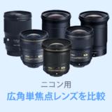 ニコン広角単焦点レンズ