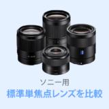 ソニー用標準単焦点レンズ