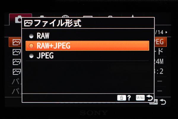 RAW-JPEG設定