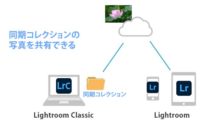 Lightroom Classicコレクション同期