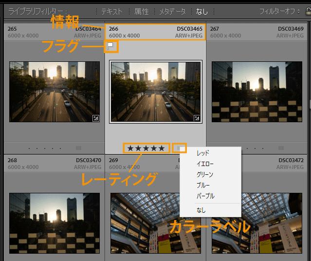 Lightroom Classicライブラリモジュール画面表示設定