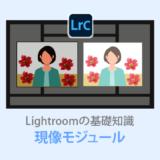 Lightroom Classic【現像モジュール解説】基本操作