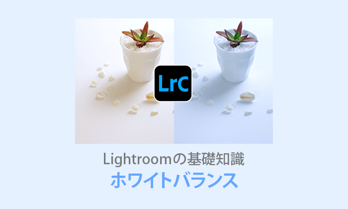 Lightroom Classicホワイトバランス