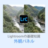 Lightroom Classic外観パネル